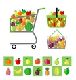 Shopping cart and shopping baskets with fruits vector image