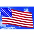 USA flag on sky vector image vector image
