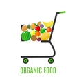 Shopping cart with fresh fruits vector image