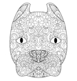 good American Pit Bull Terrier head coloring vector image