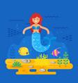 mermaid coral reef fish and sea life vector image