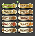 set of nuts labels vector image