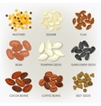 Icons of seeds and grains beans vector image