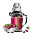 drawing color kitchen blender with cherry juice vector image vector image