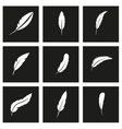 black feather icon set vector image vector image