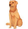 Labrador retriever dog breed vector image