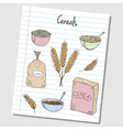 cereals doodles lined paper colored vector image