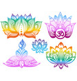 ornamental color lotus flowers vector image