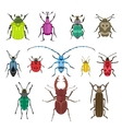 Colorful insects biology collection vector image vector image