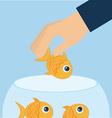 fish aquarium vector image