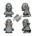 Vampire Bust in Four Projections vector image