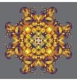 circle golden abstract design vector image