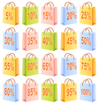Shopping bags and discount vector image