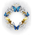 Jewelry Banner with Blue Butterflies Morpho vector image