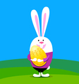 rabbit with easter egg vector image