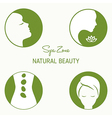 Set of design elements for spa vector image