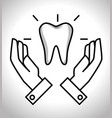 teeth dental care isolated icon vector image