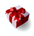 Gift on Valentines Day Birthday gift vector image