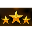 the three gold stars vector image