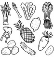 hand draw vegetable fruit doodles vector image
