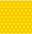 honey cell background vector image vector image