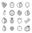 Line art fruit icons set flat design isolated vector image vector image
