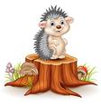 Adorable baby hedgehog sitting on tree stump vector image