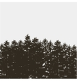 Black pine tree forest isolated on white grey vector image