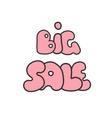 Big sale handwritten text vector image