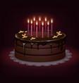 birthday chocolate cake vector image