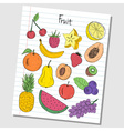 fruit doodles lined paper colored vector image