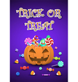 Halloween sweets and candies in pumpkin bucket vector image