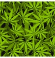 Marijuana leaves seamless pattern vector image