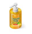 Liquid soap isometric vector image