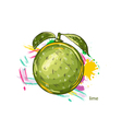 lime with colorful splashes vector image