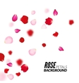 Rose petals background For presentations vector image