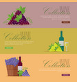 set of fliers for elite wine collections vector image