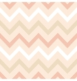 Seamless geometric Zig zag stripes vector image