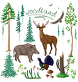 woodland set in color vector image