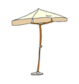A view of parasol vector image