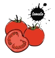 vegetables red tomato vector image