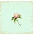 Clover flower on vintage background watercolor vector image