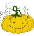 large festive pumpkin vector image
