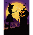 The little witch on the roof vector image