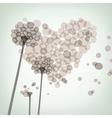 dandelion love vector image