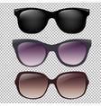 sunglasses set vector image