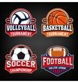 Set of basketball football soccer volleyball vector image