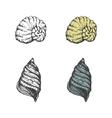 Set of hand-drawn seashells eps8 vector image