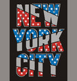 vintage new york city vector image