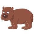wombat vector image vector image